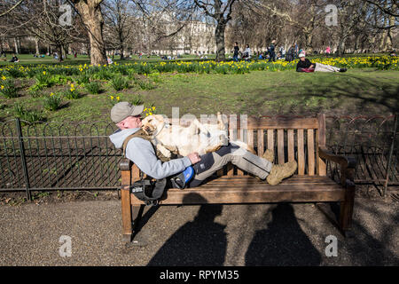 St James' Park, Central London, UK. 23rd February, 2019. A man and his canine friend enjoy the warm temperatures as Spring arrives in St James park, London, England UK 23rd February, 2019 Credit: Jeff Gilbert/Alamy Live News - Stock Photo