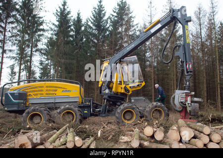 Flechtlingen, Germany. 21st Feb, 2019. Bernd Blum from the Blum forestry operation gets into his harvester. At present, trees infested and weakened by pests are being felled in the forests around weevils in order to counteract mass propagation of the pests. The foresters of the Landeszentrum Wald Sachsen-Anhalt attribute the damage to the coniferous forests to the drought in 2018. After the sick trees have been cleared, they are to be reforested with climate-resistant and site-suitable tree species. Credit: Klaus-Dietmar Gabbert/dpa-Zentralbild/ZB/dpa/Alamy Live News - Stock Photo