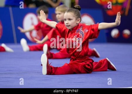 Moscow, Russia. 23rd Feb, 2019. Competitors perform during the opening ceremony for the Moscow Wushu Stars 2019 competition in Moscow, Russia, on Feb. 23, 2019. Credit: Bai Xueqi/Xinhua/Alamy Live News