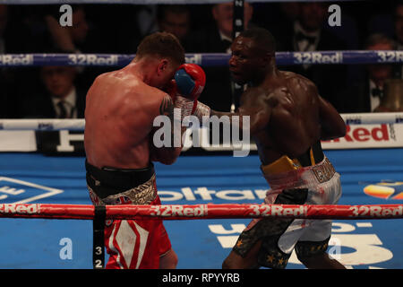 London, UK. 23rd February 2019. O2 Arena, London, England; IBO super middleweight world title fight, James De Gale versus Chris Eubank Jr; Undercard fight shows Andre Sterling in control of the fight against Ricky Summers Credit: Action Plus Sports Images/Alamy Live News - Stock Photo