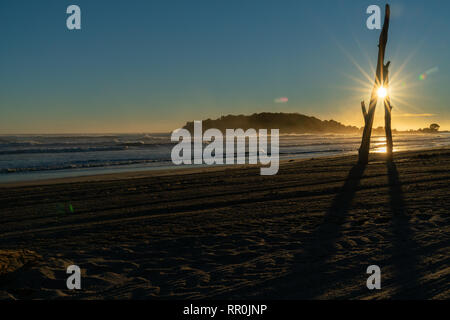 Tracks from beach grooming leading away towards sunrise with sun burst between driftwood standing on beach - Stock Photo