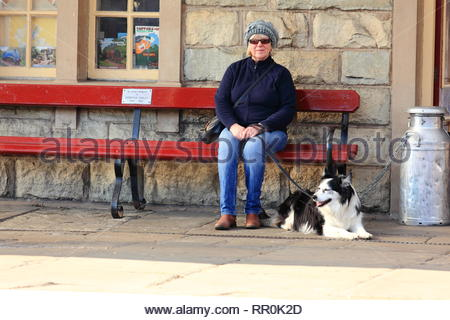 A lady pensioner with her Border Collie Dog sitting on a bench waiting for a train at Ramsbottom East Lancashire Railway. - Stock Photo