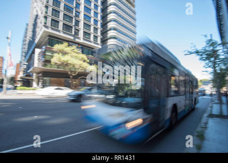 A blurred image of a fast moving New South Wales government blue and white bus on a Sydney city street - Stock Photo
