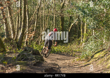Cyclist cycling through countryside at The Hurtwood in the Surrey Hills Area of Outstanding Natural Beauty (AONB), UK - Stock Photo