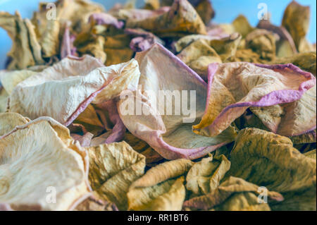 Dried Pink and Yellow Rose Petals Scattered on Blue Background. Top View, Flat Lay, Copy Space. Valentine, International Women's Day Card, Banner, Cov - Stock Photo