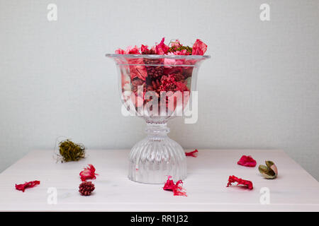 Beautiful red dry flowers in vintage or rustic glass vase on the white background with copy space - Stock Photo