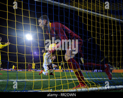 Frosinone. 23rd Feb, 2019. Roma's Edin Dzeko reacts after scoring during a Italian Serie A soccer match between Frosinone and Roma in Frosinone Italy, Feb. 23, 2019. Roma won 3-2. Credit: Alberto Lingria/Xinhua/Alamy Live News - Stock Photo