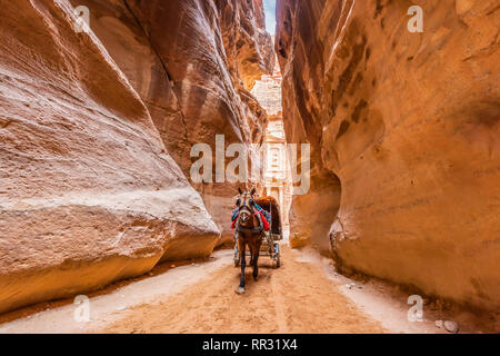 The Siq, the narrow slot-canyon that serves as the entrance passage to the hidden city of Petra, Jordan - Stock Photo