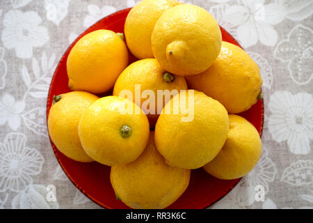 Citrus limon, fruit with health benefits, loaded with vitamin C and fiber, fight free radicals and suitable for diet - Stock Photo