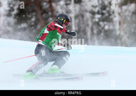 Miass, Russia. 24th Feb, 2019. CHELYABINSK REGION, RUSSIA - FEBRUARY 24, 2019: Athlete Christopher Del Bosco of Canada competes in the men's ski cross semifinal event of the 2018/19 FIS Freestyle Ski World Cup held at the Sunny Valley ski base in Miass. Donat Sorokin/TASS Credit: ITAR-TASS News Agency/Alamy Live News - Stock Photo