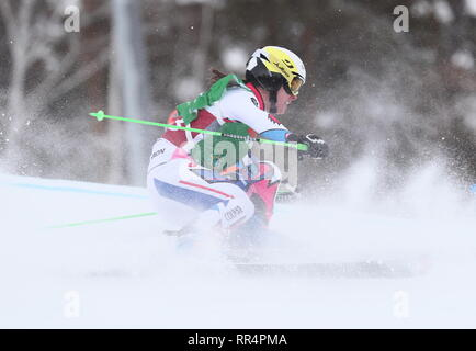 Miass, Russia. 24th Feb, 2019. CHELYABINSK REGION, RUSSIA - FEBRUARY 24, 2019: Athlete Alizee Baron of France competes in the ladies' ski cross semifinal event of the 2018/19 FIS Freestyle Ski World Cup held at the Sunny Valley ski base in Miass. Donat Sorokin/TASS Credit: ITAR-TASS News Agency/Alamy Live News - Stock Photo