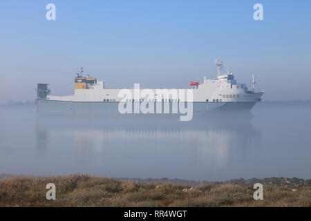 Cliffe, Kent, UK. 24th February 2019. The Celestine cargo ship sails along the Thames Estuary before the mist had burnt away this morning at Cliffe in Kent. Credit: Julia Gavin/Alamy Live News - Stock Photo