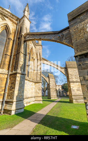 Chapter House and its flying buttresses on Cathedral Green at Lincoln Cathedral in the city of Lincoln, Lincolnshire (Lincs), East Midlands, England - Stock Photo