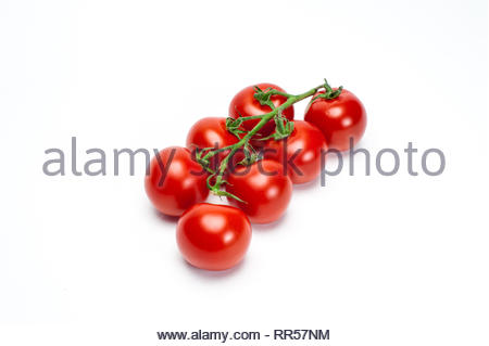 Red tomatoes on twig on white background - Stock Photo