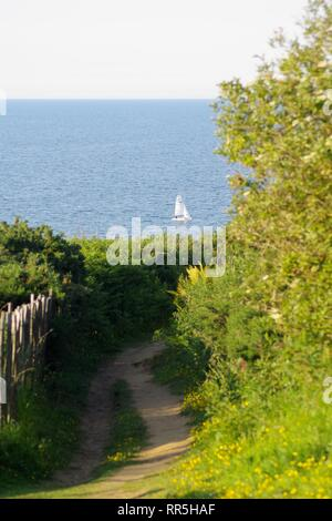 Singlehanded Sailing Dinghies Sailing on a Peaceful Summers Evening by St Andrew's, Fife, Scotland, UK. - Stock Photo