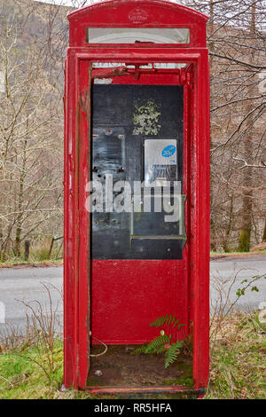 OLD RED DISUSED DERELICT TELEPHONE BOX WITH GREEN FERN GROWING INSIDE - Stock Photo