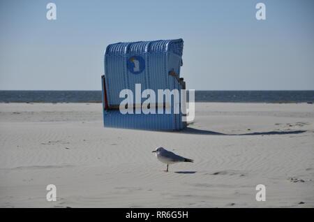 Strandkorb mit Möwe - Stock Photo
