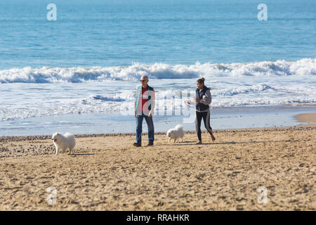 Bournemouth, Dorset, UK. 25th Feb, 2019. UK weather: another lovely warm sunny day at Bournemouth as visitors enjoy the sunshine at the beach on the hottest day of the year so far and hottest February day ever. Man and woman walking along seashore with dogs. Credit: Carolyn Jenkins/Alamy Live News