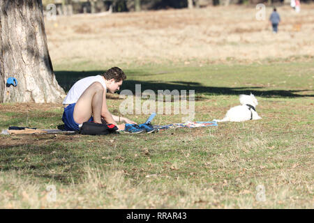 London, UK. 25th Feb, 2019. People and wildlife make the most of the hottest ever day in February at Bushy Park, near Hampton Court Palace. Credit: James Hancock/Alamy Live News - Stock Photo