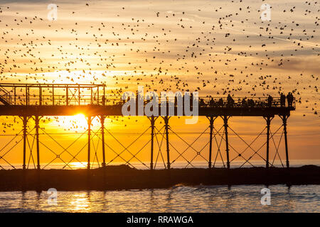 Aberystwyth, Wales. 25th Feb 2019. UK Weather: Hottest February on record in UK at Ceredigion, with daytime temperature at over 20 degrees. Starlings murmuration at Royal Pier.Aberystwyth sunset, Ceredigion, Wales, U.K. Credit: Paul Quayle/Alamy Live News - Stock Photo