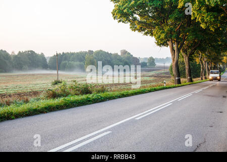 big truck on the new asphalt road in the forest on summer sunrise - Stock Photo