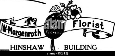 ". Florists' review [microform]. Floriculture. WINSTON-SALEM,N.C. AT YOUR SERVICE Member F. T. D.. HINSHAW BUILDING ISjiaJiuHm/iowei^ Through : [/ UK MB IMB Mfe as BM Caw .^. T^.^ ^« Sfi JOB IS IBI Home, Grown Flowers Artistically Arranged Charlotte, N. C. ^J^ity Scholtz, THE FLORIST INC. Member Florists' Telegraph Delivery Ass'n. CHARLOTTE, N. C. AND VICINITY THE FLOWER SHOP 203 N. TRYON STREET Member F. T. D. GOLDSBORO, N. C. Ga^'^ City to Eastern North Carolina GOLDSBORO FLORAL CO. Modem Greenhouses—Retail Store 20 yeai-8' experience WILSON, N. C. ""fl^fD. STARR. The Florist DURHAM, N. C - Stock Photo"