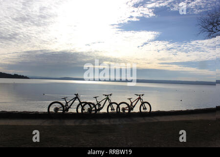 Three mountain bikes parking at the seaside. Sea view with horizont over water and stripe of wood. - Stock Photo