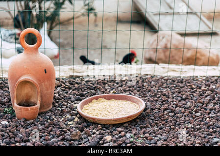 Feeder of hens on a farm. - Stock Photo