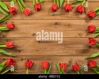 Border of red tulips blossoms on rustic wooden background with copy space - Stock Photo