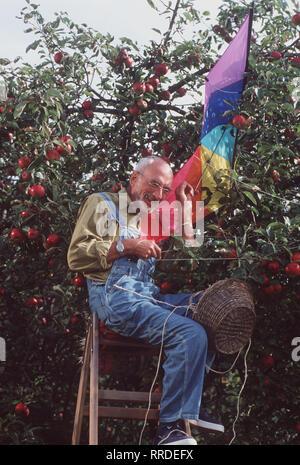 Löwenzahn - Peter (PETER LUSTIG) steht auf der Leiter und erntet Äpfel, als plötzlich ein unbekanntes Flugobjekt im Apfelbaum hängenbleibt. Es ist der Lenkdrache von Nachbar Paschulke - der bereitet sich nämlich auf einen Drachenwettbewerb vor. Regie: Hannes Spring, Wolfgang Teichert aka. Drachen fliegen / Überschrift: LÖWENZAHN / BRD 1998 - Stock Photo