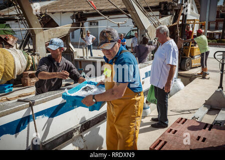 Fishermen unload their catch of fresh fish onto the quayside at the port in Denia, Spain. - Stock Photo
