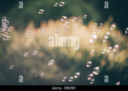 lots of soap bubbles on blurred grass background - Stock Photo