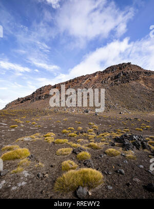 The landscape of the Tongariro walking route, New Zealand. - Stock Photo