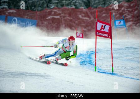 Bansko, Bulgaria. 24th Feb 2019. Zan Kranjec (SLO) competing in Audi FIS Alpine Ski World Cup Men's Giant Slalom on February 24, 2019 in Bansko, Bulgaria. Credit: Borislav Stefanov/Alamy Live News - Stock Photo