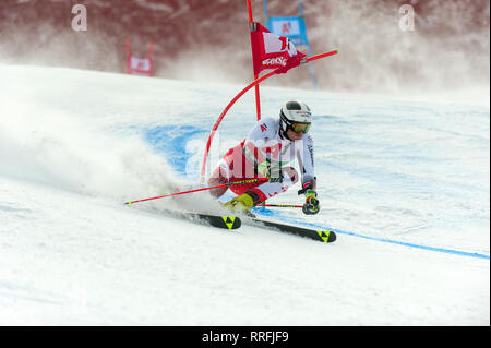 Bansko, Bulgaria. 24th Feb 2019. Stefan Brennsteiner (AUT) competing in Audi FIS Alpine Ski World Cup Men's Giant Slalom on February 24, 2019 in Bansko, Bulgaria. Credit: Borislav Stefanov/Alamy Live News - Stock Photo