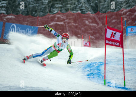 Bansko, Bulgaria. 24th Feb 2019. Zan Kranjec (SLO) competing in Audi FIS Alpine Ski World Cup Men's Giant Slalom on February 24, 2019 in Bansko, Bulgaria. Credit: Borislav Stefanov/Alamy Live News - Stock Photo