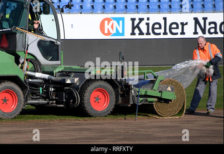 26 February 2019, Schleswig-Holstein, Kiel: Around 8000 square meters of new grass will be laid in the Holstein Stadium in Kiel. The 290 reels cost an almost six-figure sum. The last time the lawn was changed was about a year ago. Holstein Kiel plays here on 01.03.2019 against Union Berlin Photo: Carsten Rehder/dpa - IMPORTANT NOTE: In accordance with the requirements of the DFL Deutsche Fußball Liga or the DFB Deutscher Fußball-Bund, it is prohibited to use or have used photographs taken in the stadium and/or the match in the form of sequence images and/or video-like photo sequences. - Stock Photo