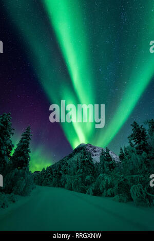 Northern lights over Mt Gjærdalstinden in northern norway with trees and a snow covered road in the foreground. - Stock Photo