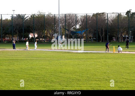 Dubai-Zabeel Park players at the Cricket Ground zoomed - Stock Photo