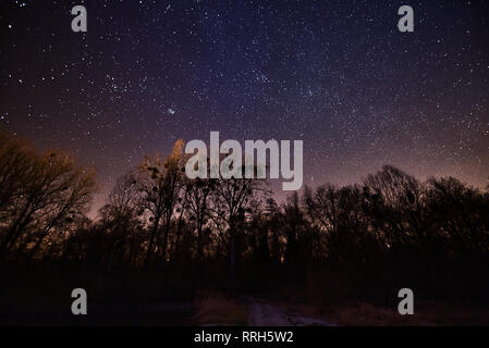 Night Sky Stars Forest River - Stock Photo