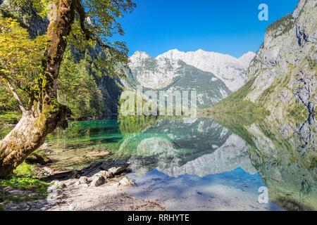 Watzmann Mountain reflecting in Lake Obersee, near lake Koenigssee, Berchtesgadener Land, Berchtesgaden National Park, Upper Bavaria, Bavaria, Germany - Stock Photo