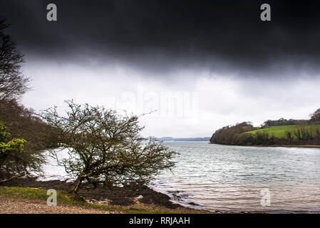 The coast around the River Fal in Cornwall. - Stock Photo