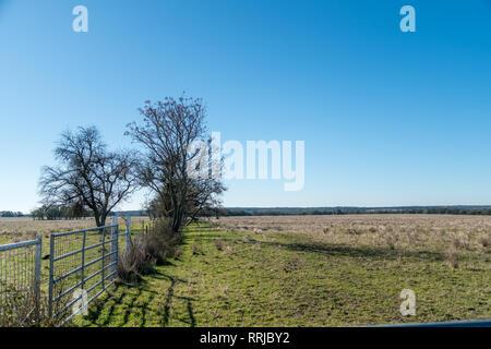 View of Open Farm Land With White Gate next to Trees - Stock Photo