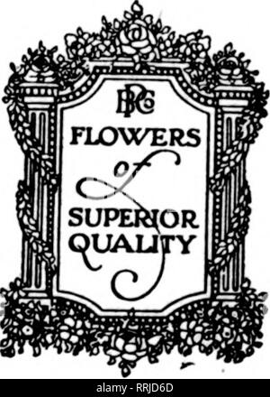 . Florists' review [microform]. Floriculture. Nature's WE OFFER su CATTLEY Small 1 - Medium 1^ ?? - Large ^m ^m -. Please note that these images are extracted from scanned page images that may have been digitally enhanced for readability - coloration and appearance of these illustrations may not perfectly resemble the original work.. Chicago : Florists' Pub. Co - Stock Photo
