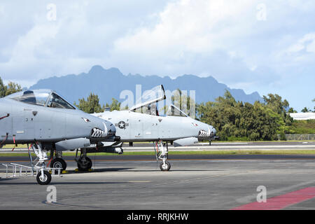 A-10 Thunderbolt II attack aircraft assigned to the 442d Fighter Wing sit on the ramp Feb. 21, 2019, at Marine Corps Base Hawaii. The 442d conducted joint exercises with U.S. Marines, testing their capabilities alongside MV-22 Osprey tiltrotor aircraft. (U.S. Air Force Photo by Tech. Sgt. Bob Jennings) - Stock Photo