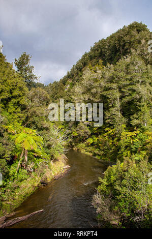 Tangarakau River gorge, Forgotten World Highway, New Zealand. Steep sided, rainforest covered. river valley. Green nature landscape with grey cloudy - Stock Photo