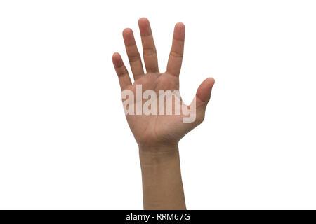 One hand raised high up isolated on white background. - Stock Photo
