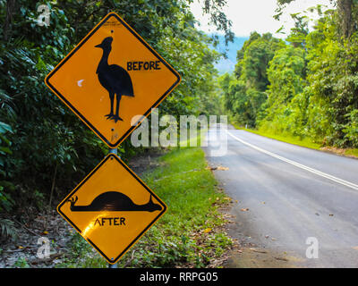 warning sign on the road attention giant running bird cassowary, travel adventure Australia - Stock Photo