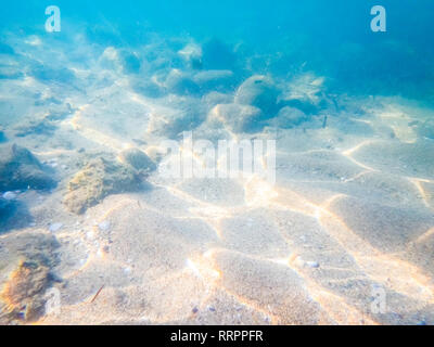 Underwater shot of sea floor bottom - Image of ocean floor - Photo taken underwater - Stock Photo