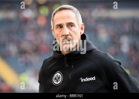 Frankfurt, Deutschland. 17th Feb, 2019. Adi HUETTER (Hvºtter, coach, F), Half-length, looks to the side, Football 1. Bundesliga, 22. matchday, Eintracht Frankfurt (F) - Borussia Monchengladbach (MG) 1: 1, on 17.02.2019 in Frankfurt/Germany. ¬ | usage worldwide Credit: dpa/Alamy Live News - Stock Photo